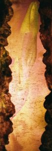 Nr.4 Foto Diaprojektion bedrucktes Chinapapier Irisknospe Schwangerschaft Apfel Fruchtbarkeit Symbol Mutterschaft Schoß Kunst